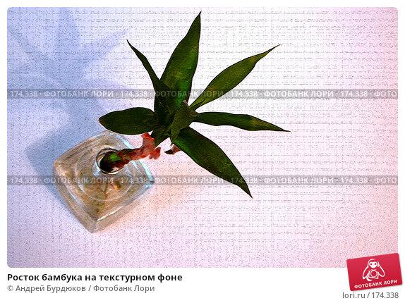 Росток бамбука на текстурном фоне, фото № 174338, снято 19 декабря 2007 г. (c) Андрей Бурдюков / Фотобанк Лори