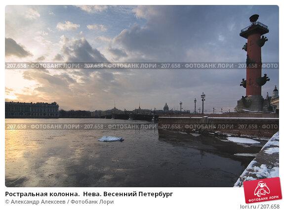 Купить «Ростральная колонна.  Нева. Весенний Петербург», эксклюзивное фото № 207658, снято 5 февраля 2008 г. (c) Александр Алексеев / Фотобанк Лори