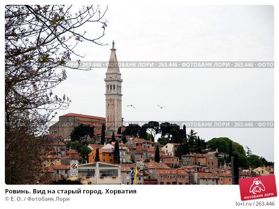 Ровинь. Вид на старый город. Хорватия, фото № 263446, снято 25 апреля 2008 г. (c) Екатерина Овсянникова / Фотобанк Лори