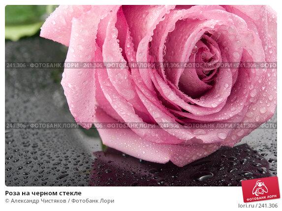 Роза на черном стекле, фото № 241306, снято 23 марта 2017 г. (c) Александр Чистяков / Фотобанк Лори