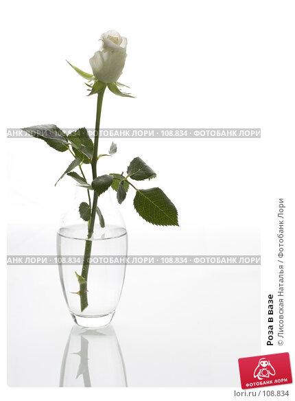 Роза в вазе, фото № 108834, снято 2 ноября 2007 г. (c) Лисовская Наталья / Фотобанк Лори