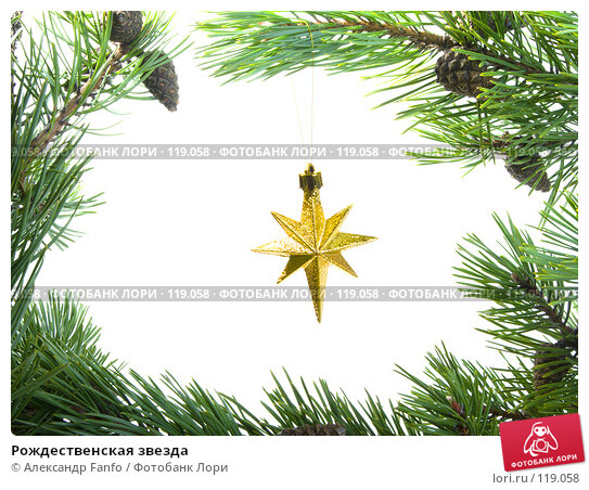 Купить «Рождественская звезда», фото № 119058, снято 21 апреля 2018 г. (c) Александр Fanfo / Фотобанк Лори