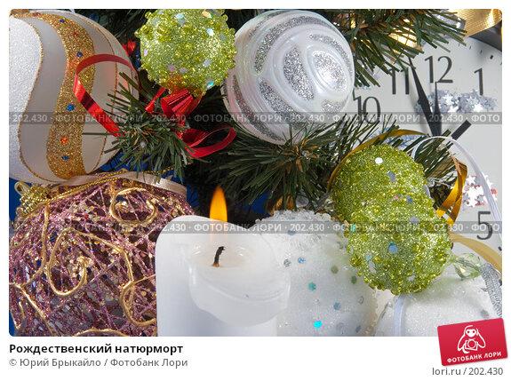 Рождественский натюрморт, фото № 202430, снято 25 ноября 2007 г. (c) Юрий Брыкайло / Фотобанк Лори
