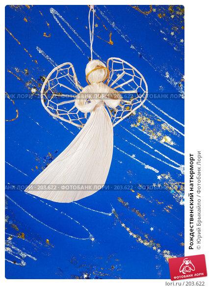 Рождественский натюрморт, фото № 203622, снято 25 ноября 2007 г. (c) Юрий Брыкайло / Фотобанк Лори