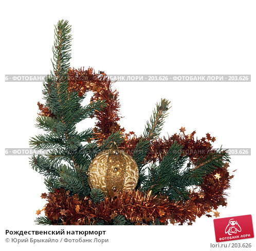Рождественский натюрморт, фото № 203626, снято 2 декабря 2007 г. (c) Юрий Брыкайло / Фотобанк Лори