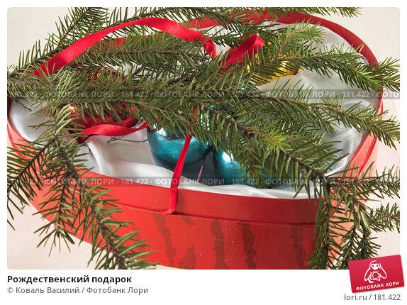 Рождественский подарок, фото № 181422, снято 22 ноября 2006 г. (c) Коваль Василий / Фотобанк Лори