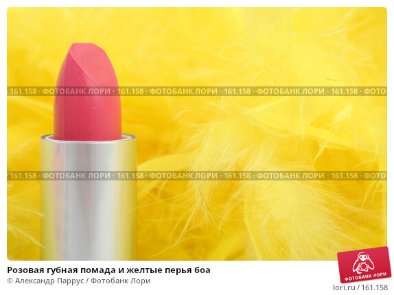 Розовая губная помада и желтые перья боа, фото № 161158, снято 25 июня 2007 г. (c) Александр Паррус / Фотобанк Лори