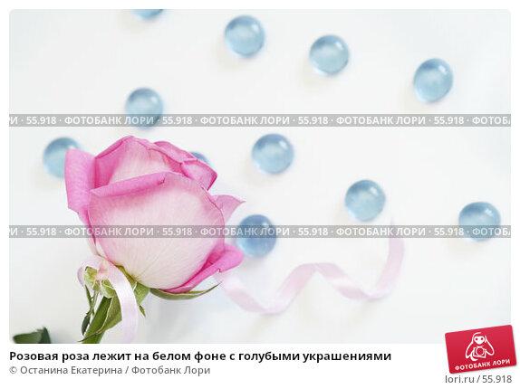 Розовая роза лежит на белом фоне с голубыми украшениями, фото № 55918, снято 29 марта 2007 г. (c) Останина Екатерина / Фотобанк Лори