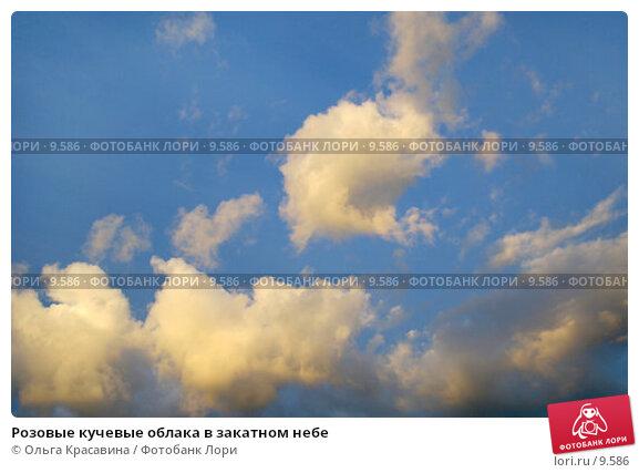 Розовые кучевые облака в закатном небе, фото № 9586, снято 26 июня 2006 г. (c) Ольга Красавина / Фотобанк Лори