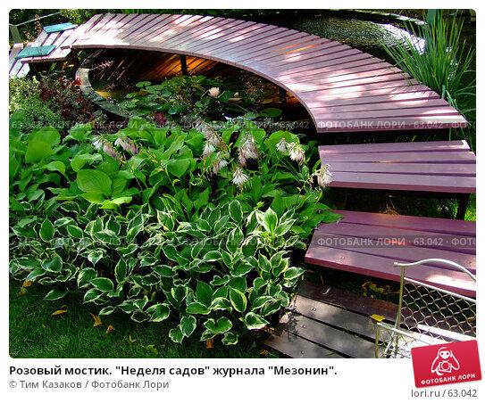"""Розовый мостик. """"Неделя садов"""" журнала """"Мезонин""""., фото № 63042, снято 17 июля 2007 г. (c) Тим Казаков / Фотобанк Лори"""