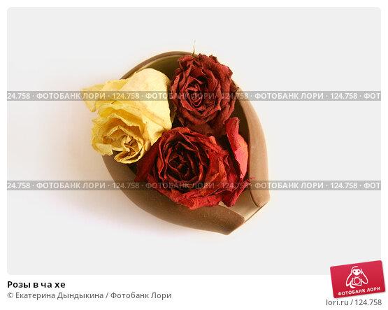 Розы в ча хе, фото № 124758, снято 22 ноября 2007 г. (c) Екатерина Дындыкина / Фотобанк Лори