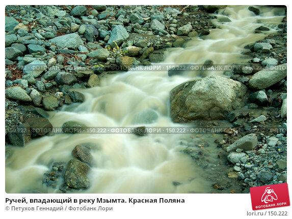 Купить «Ручей, впадающий в реку Мзымта. Красная Поляна», фото № 150222, снято 13 августа 2007 г. (c) Петухов Геннадий / Фотобанк Лори