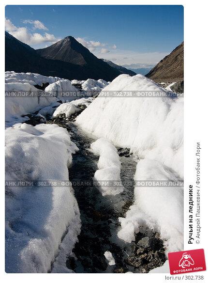 Ручьи на леднике, фото № 302738, снято 22 июля 2017 г. (c) Андрей Пашкевич / Фотобанк Лори