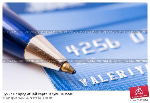 Ручка на кредитной карте. Крупный план, фото № 317814, снято 6 июня 2008 г. (c) Валерия Потапова / Фотобанк Лори