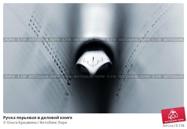 Ручка перьевая в деловой книге, фото № 5118, снято 13 июня 2006 г. (c) Ольга Красавина / Фотобанк Лори