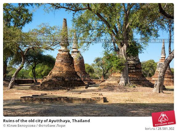 Купить «Ruins of the old city of Ayutthaya, Thailand», фото № 28581302, снято 27 января 2017 г. (c) Юлия Белоусова / Фотобанк Лори