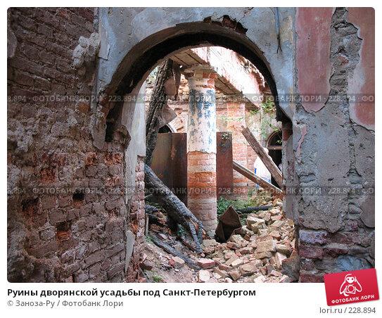 Руины дворянской усадьбы под Санкт-Петербургом, фото № 228894, снято 12 августа 2007 г. (c) Заноза-Ру / Фотобанк Лори