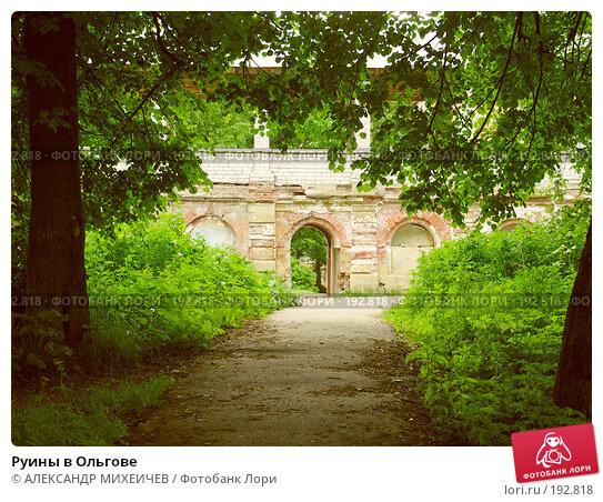 Руины в Ольгове, фото № 192818, снято 17 июня 2006 г. (c) АЛЕКСАНДР МИХЕИЧЕВ / Фотобанк Лори