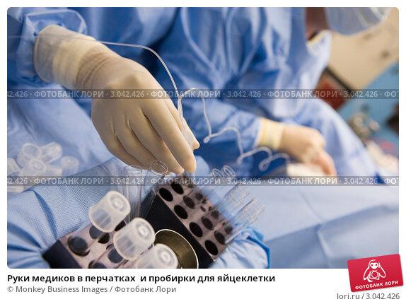 Купить «Руки медиков в перчатках  и пробирки для яйцеклетки», фото № 3042426, снято 12 декабря 2005 г. (c) Monkey Business Images / Фотобанк Лори