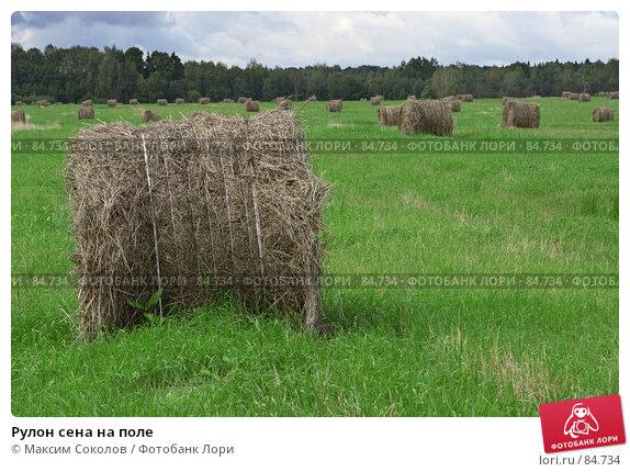Рулон сена на поле, фото № 84734, снято 13 сентября 2007 г. (c) Максим Соколов / Фотобанк Лори