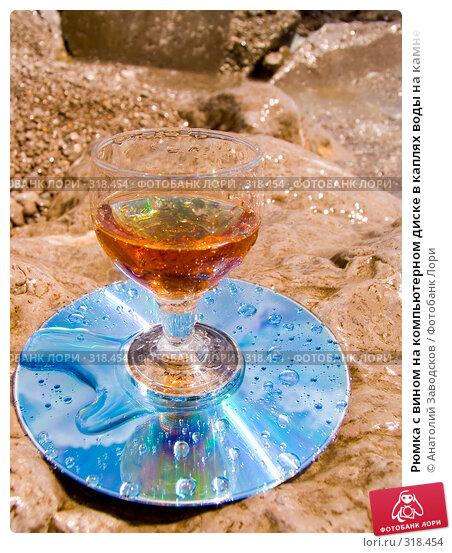 Рюмка с вином на компьютерном диске в каплях воды на камне, фото № 318454, снято 27 мая 2006 г. (c) Анатолий Заводсков / Фотобанк Лори