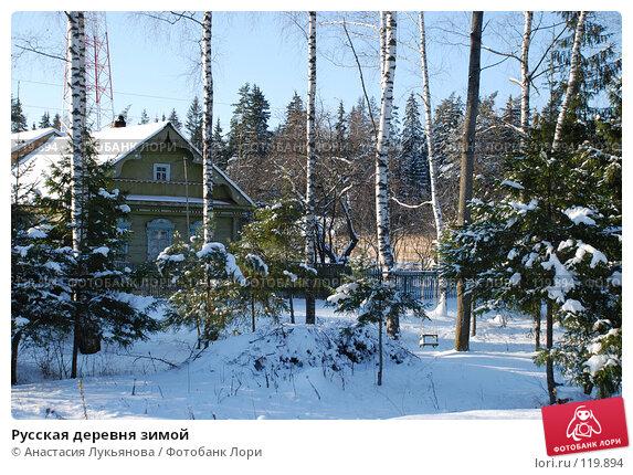 Купить «Русская деревня зимой», фото № 119894, снято 18 ноября 2007 г. (c) Анастасия Лукьянова / Фотобанк Лори