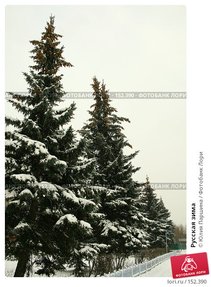 Купить «Русская зима», фото № 152390, снято 17 ноября 2007 г. (c) Юлия Паршина / Фотобанк Лори