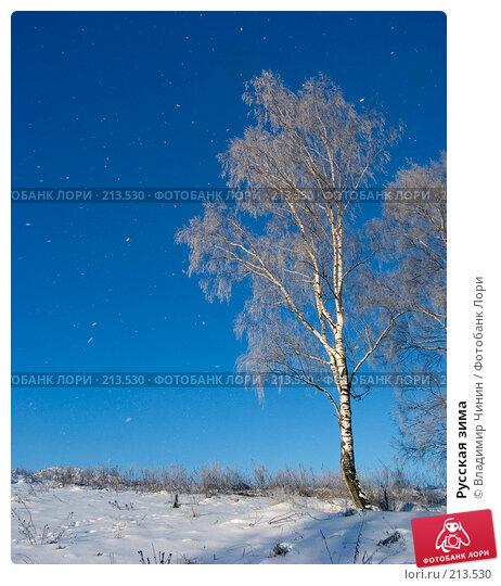Русская зима, эксклюзивное фото № 213530, снято 4 января 2008 г. (c) Владимир Чинин / Фотобанк Лори