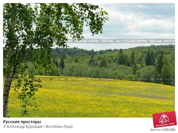 Русские просторы, фото № 208446, снято 16 июня 2006 г. (c) Александр Буровцев / Фотобанк Лори