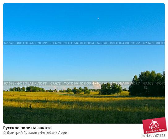 Русское поле на закате, фото № 67678, снято 23 июня 2007 г. (c) Дмитрий Гришин / Фотобанк Лори