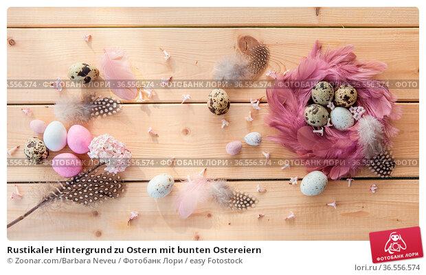 Rustikaler Hintergrund zu Ostern mit bunten Ostereiern. Стоковое фото, фотограф Zoonar.com/Barbara Neveu / easy Fotostock / Фотобанк Лори