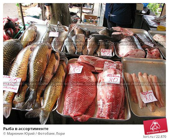 Рыба в ассортименте, фото № 22870, снято 27 апреля 2006 г. (c) Марюнин Юрий / Фотобанк Лори