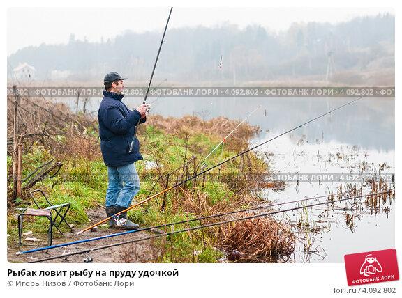 Купить «Рыбак ловит рыбу на пруду удочкой», эксклюзивное фото № 4092802, снято 5 ноября 2012 г. (c) Игорь Низов / Фотобанк Лори