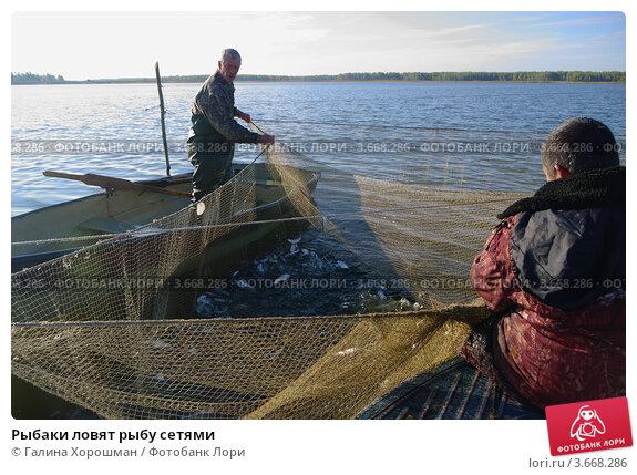 ловить рыбу сетями и продавать