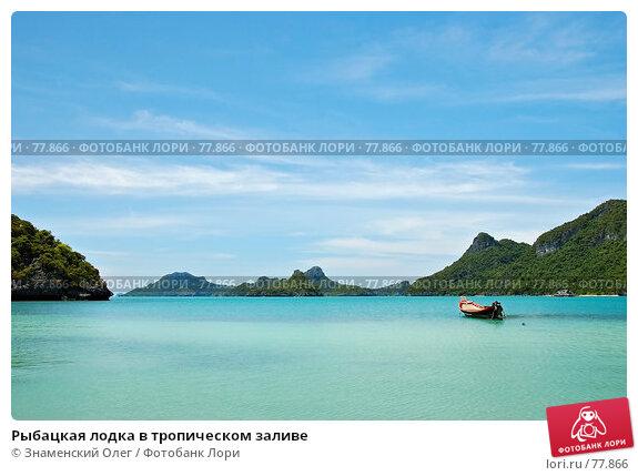 Рыбацкая лодка в тропическом заливе, фото № 77866, снято 20 августа 2007 г. (c) Знаменский Олег / Фотобанк Лори