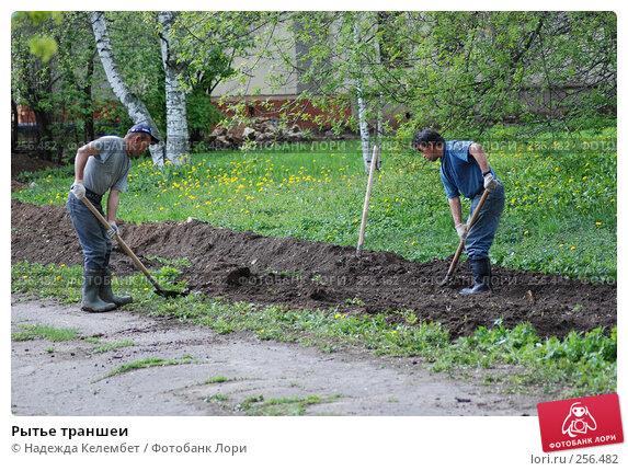 Рытье траншеи, фото № 256482, снято 13 мая 2007 г. (c) Надежда Келембет / Фотобанк Лори