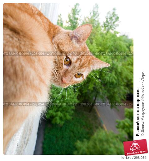 Рыжий кот на карнизе, фото № 298054, снято 12 мая 2008 г. (c) Давид Мзареулян / Фотобанк Лори