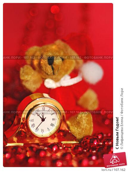 Купить «С Новым Годом!», фото № 107162, снято 30 октября 2007 г. (c) Лифанцева Елена / Фотобанк Лори