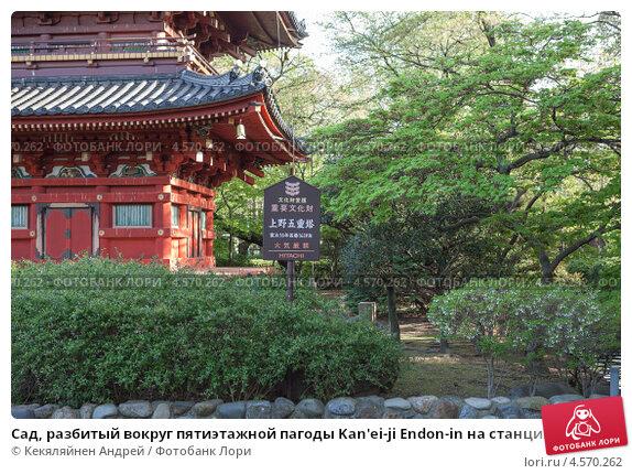 Купить «Сад, разбитый вокруг пятиэтажной пагоды Kan'ei-ji Endon-in на станции Уэно, Токио, Япония», фото № 4570262, снято 9 апреля 2013 г. (c) Кекяляйнен Андрей / Фотобанк Лори