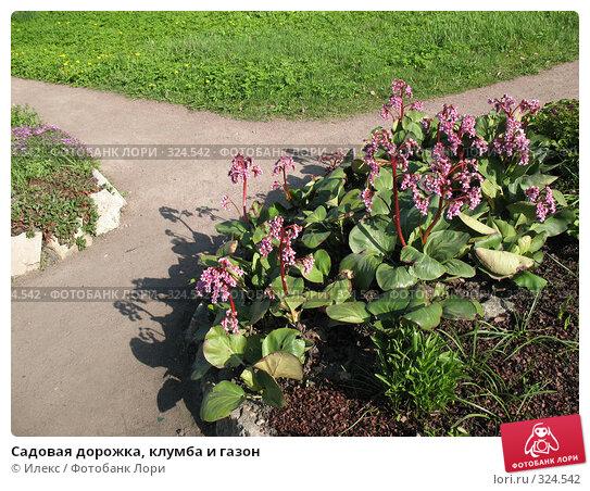 Купить «Садовая дорожка, клумба и газон», фото № 324542, снято 17 мая 2008 г. (c) Морковкин Терентий / Фотобанк Лори