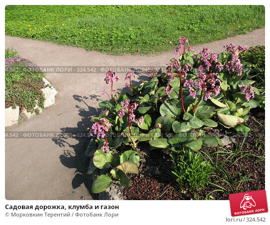 Садовая дорожка, клумба и газон, фото № 324542, снято 17 мая 2008 г. (c) Морковкин Терентий / Фотобанк Лори
