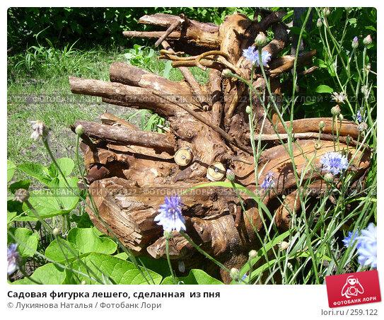 Садовая фигурка лешего, сделанная  из пня, фото № 259122, снято 7 ноября 2007 г. (c) Лукиянова Наталья / Фотобанк Лори