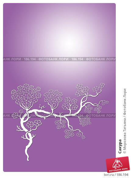 Сакура, иллюстрация № 186194 (c) Морозова Татьяна / Фотобанк Лори
