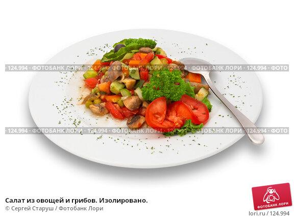 Купить «Салат из овощей и грибов. Изолировано.», фото № 124994, снято 7 октября 2006 г. (c) Сергей Старуш / Фотобанк Лори