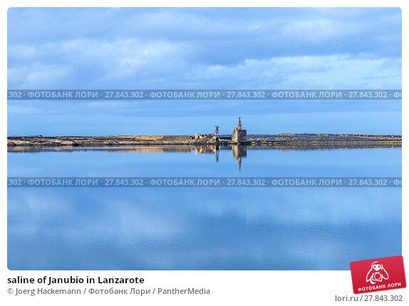 Купить «saline of Janubio in Lanzarote», фото № 27843302, снято 21 октября 2018 г. (c) PantherMedia / Фотобанк Лори