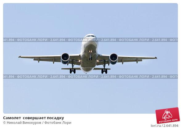 Купить «Самолет  совершает посадку», фото № 2641894, снято 2 июля 2011 г. (c) Николай Винокуров / Фотобанк Лори