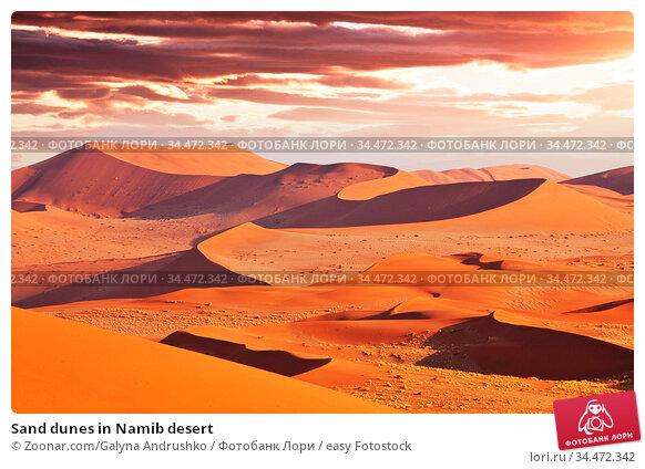 Sand dunes in Namib desert. Стоковое фото, фотограф Zoonar.com/Galyna Andrushko / easy Fotostock / Фотобанк Лори