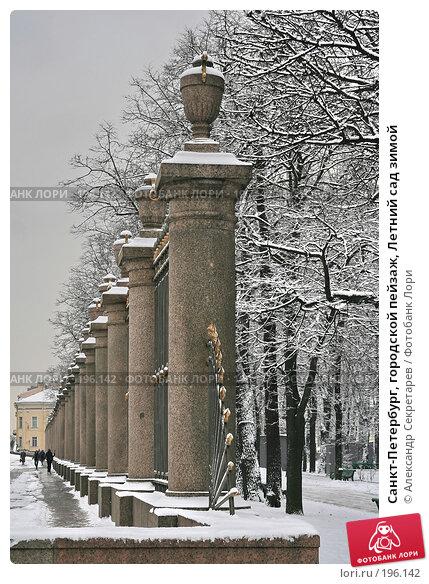 Купить «Санкт-Петербург, городской пейзаж, Летний сад зимой», фото № 196142, снято 4 февраля 2008 г. (c) Александр Секретарев / Фотобанк Лори