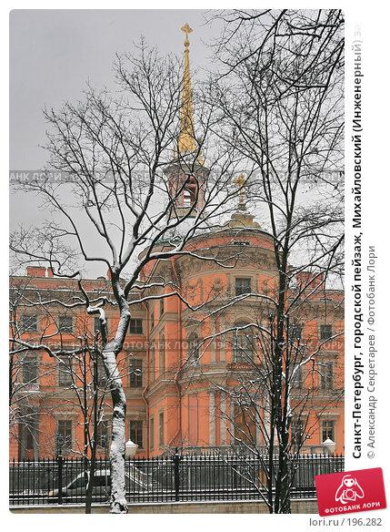 Санкт-Петербург, городской пейзаж, Михайловский (Инженерный) замок, фото № 196282, снято 4 февраля 2008 г. (c) Александр Секретарев / Фотобанк Лори