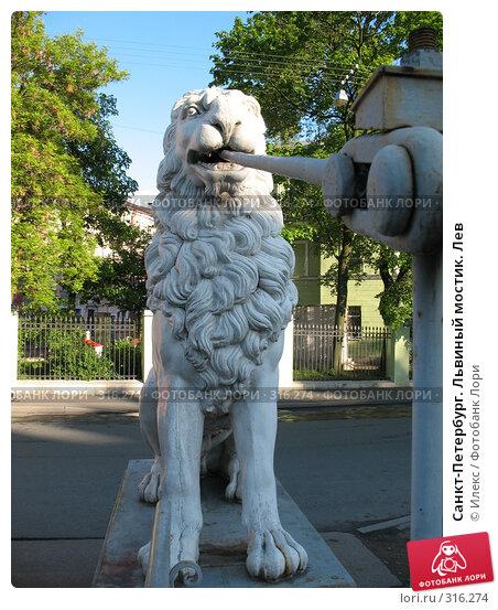 Санкт-Петербург. Львиный мостик. Лев, фото № 316274, снято 30 мая 2008 г. (c) Морковкин Терентий / Фотобанк Лори